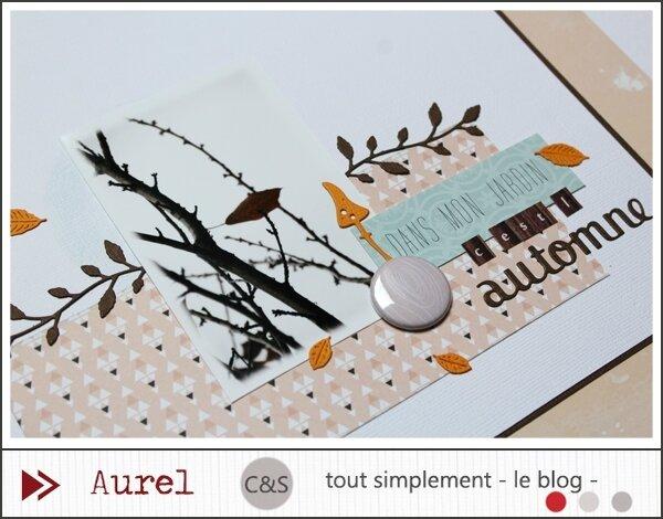 130917 - Dans mon jardin c'est l'automne - Combo #2_blog