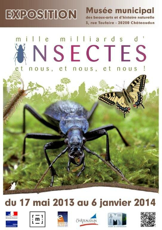 Affiche Exposition Mille milliards d'insectes