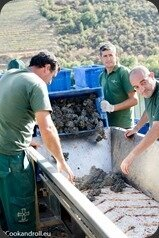 Symington-Graham-Porto-Douro-105_thumb[1]