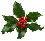 xmas_holly_png_1_by_iamszissz-d8677kl