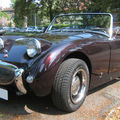 Austin healey sprite 01