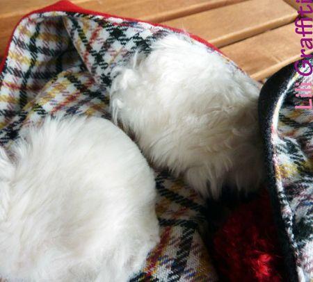 bibis d'hiver-int