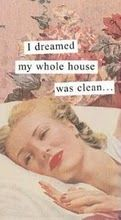 idreamedmyhousewasclean