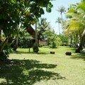 Le gite de iya, possibilité de camping (1500 frs/nuit/tente) ou de dormir en bungalow (5000 fr/nuit)