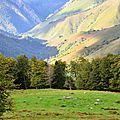 Paysages et couleurs des monts d'Arette...