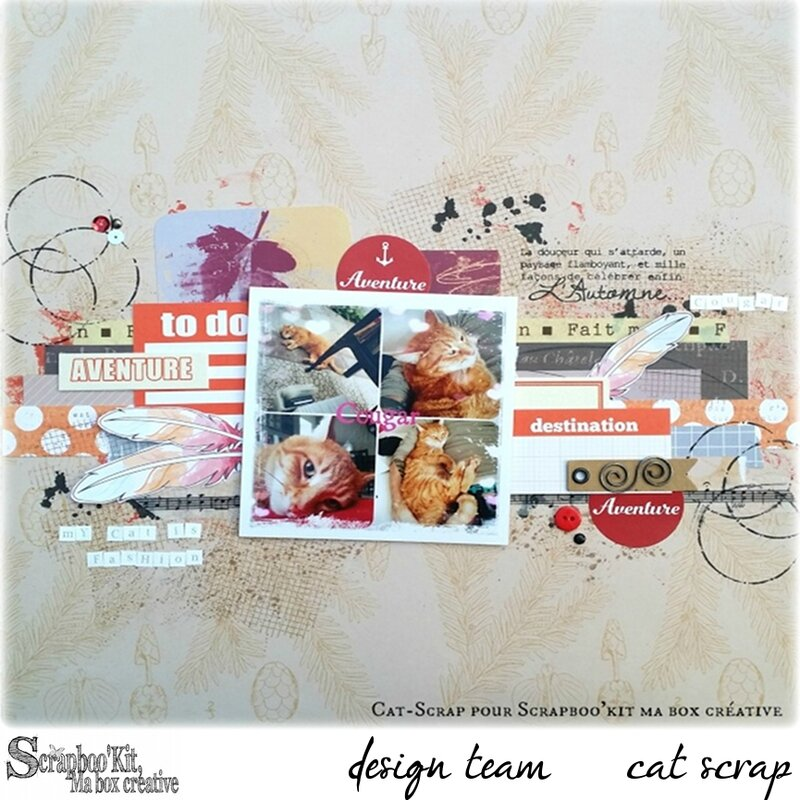 page cat scrap
