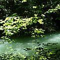 rivière La Vézéronce