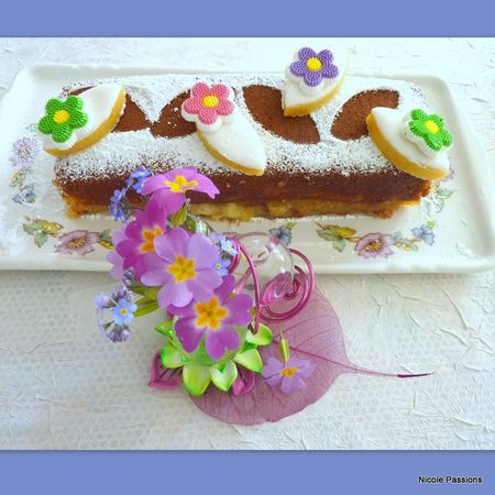 gateau_pommes_calissons17