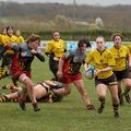 66IMG_0964T