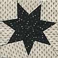 N°29-Seven-pointed star