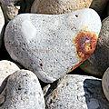 Coeur, galets Mers-les-Bains_4160