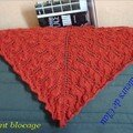 Luna Moth shawl