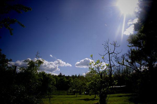 photo mai 13 015