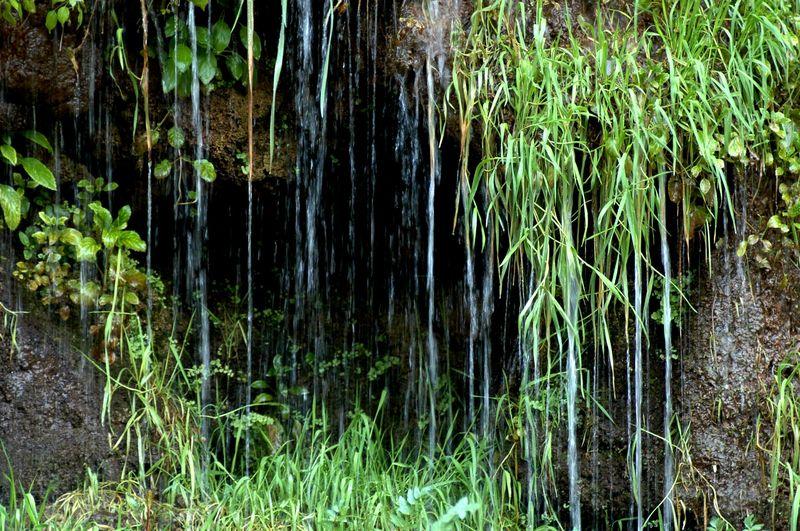 Mini-cascades et espace de randonnées