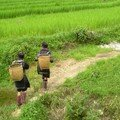 Laos - Vietnam July/August 2006