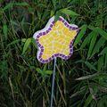 fleur d'hiver 2