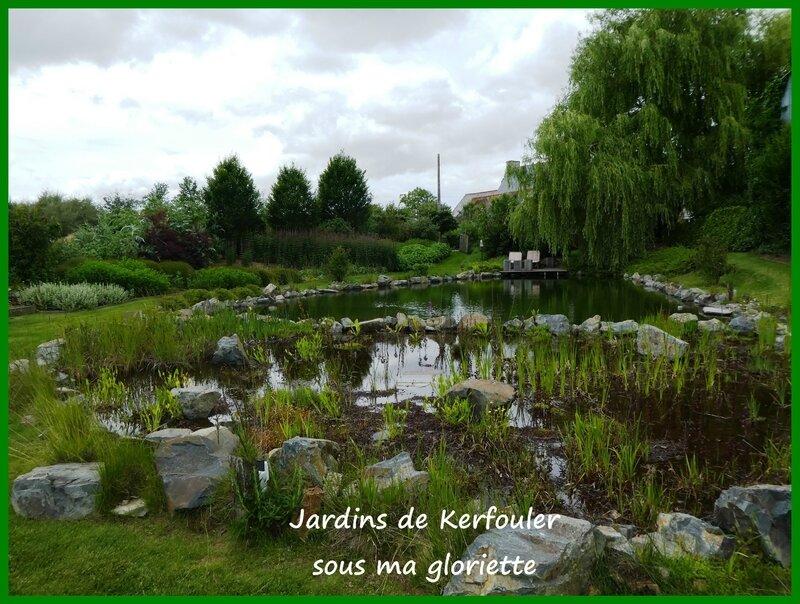 l'étang aux hirondelles2