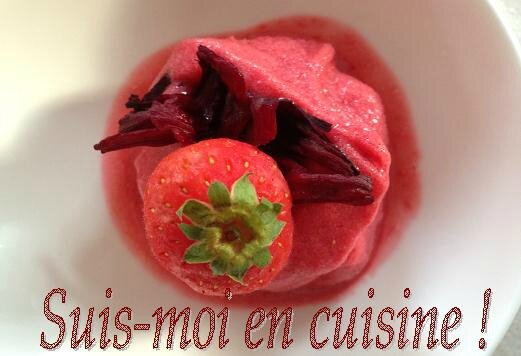 Glace Hibiscus Fraise 21