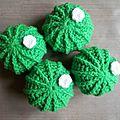 Cactus vert vif pour jongler