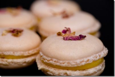 photo_Remi_Macarons_rose_citron