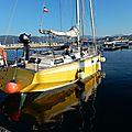 Choucas au port Tino Rossi 3 231215