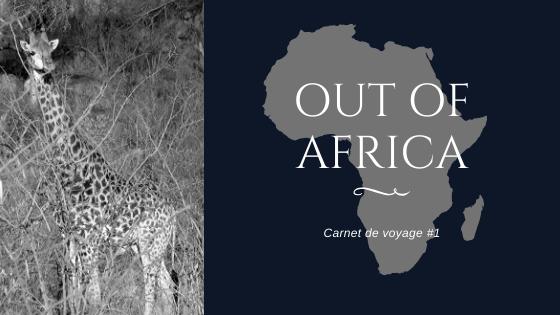 [Carnet de voyage] Out of Africa - Montpellier Johannesbourg