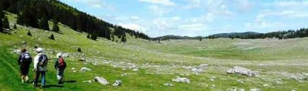 Printemps en Vercors - darbounouse