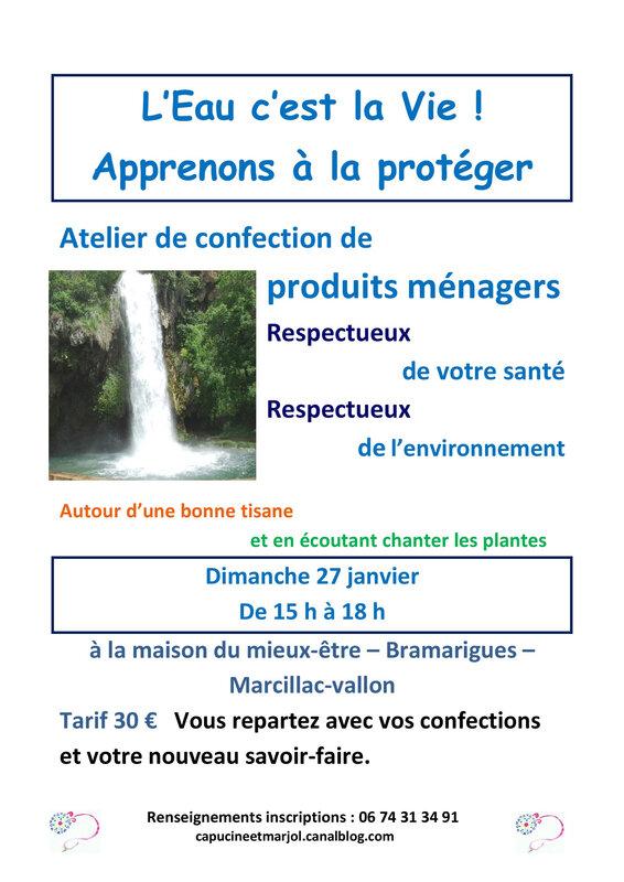 ATELIER PLANTES et PRODUITS MENAGERS 27 01 19