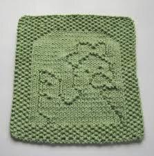 lavette poule tricot modèle