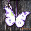 Papillon_4