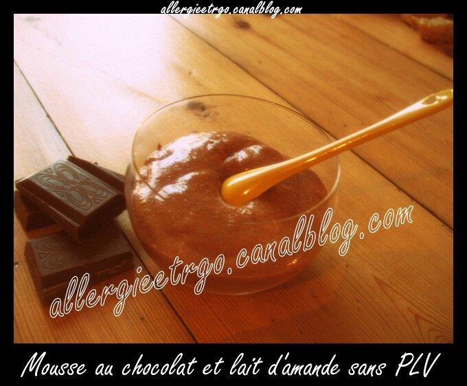 Mousse au chocolat1