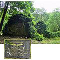 ruines de l'abbaye du Bouschet