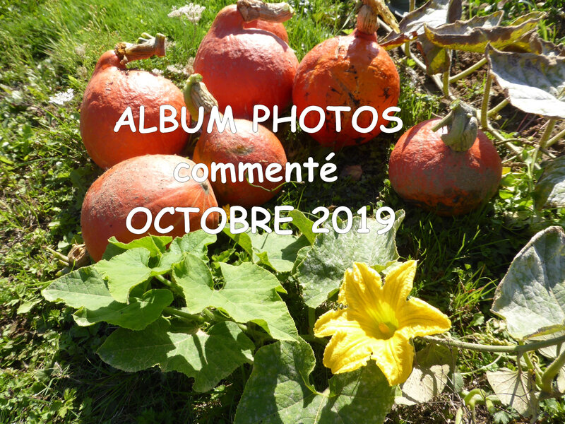 album photos octobre