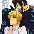 Doujinshis yaoi : durarara, fma, death note, naruto, prince of tennis, etc