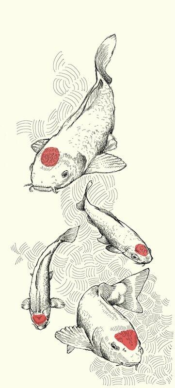 koi fish - petite taille 2