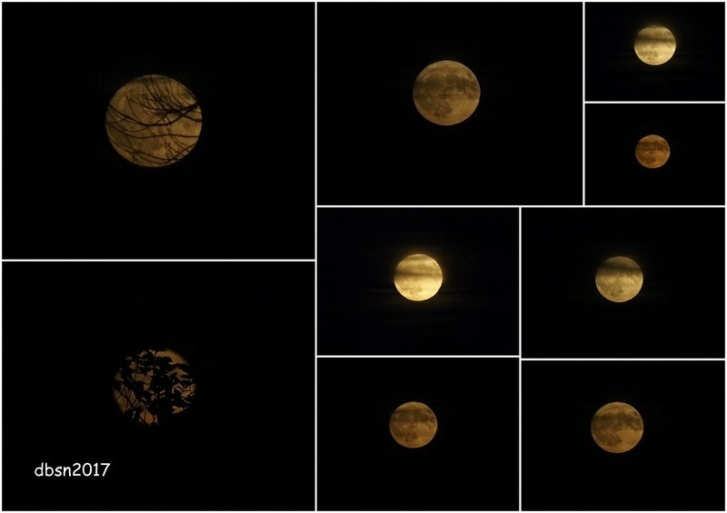 2017 11 03 lever de lune
