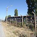 turquie : au hasard de la route convoyeur de cailloux sur plusieurs km