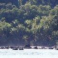 isla del cano