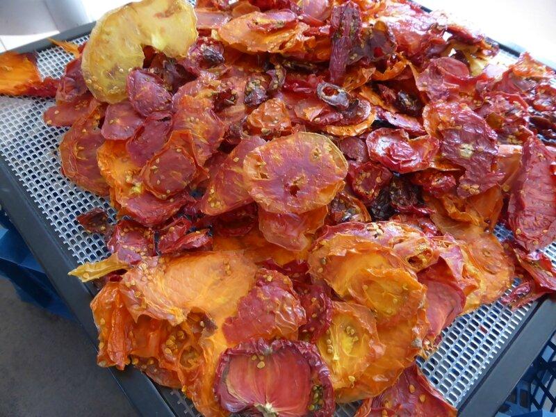 6-tomates séchées (3)