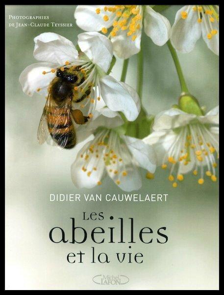 les abeilles et la vie