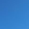 Croisière en voilier en croatie de vodice à opatija ar du 9 au 16 avril 2016. mouette près du fjord de mali losinj