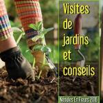 NEF 2016 - Visites de jardins et conseils
