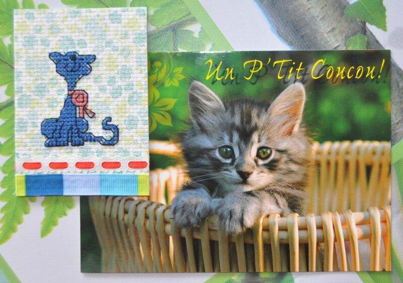 atcs échange chats (4) (Copier)