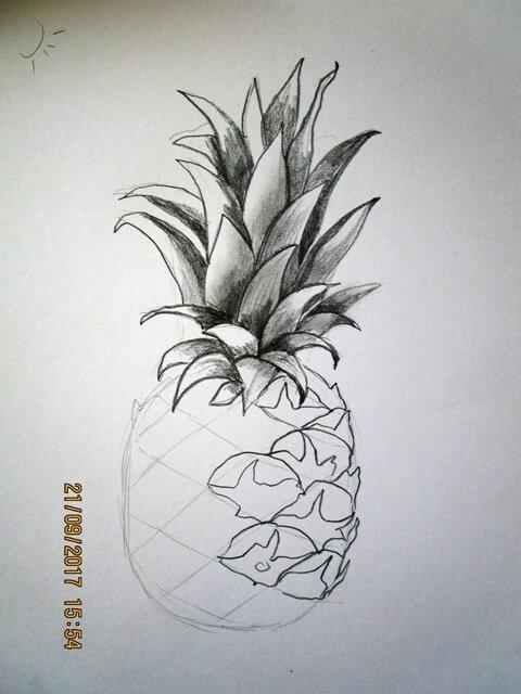 Dessin Dun Ananas Au Crayon Domi Dessins Et Peintures