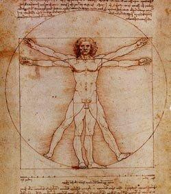 de Vinci_homme de Vitruve