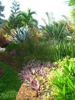 Jardin ht 4
