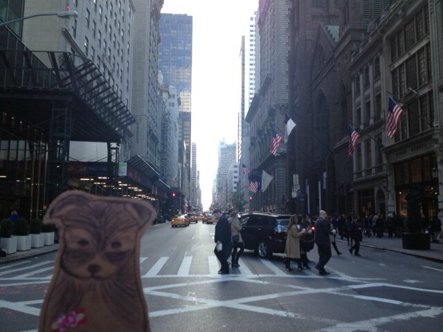 New york - 5ème avenue