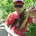 Petit bass
