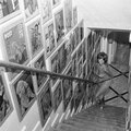 jayne_pink_palace-inside-wall_scale-1961-10-a