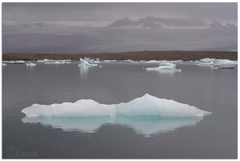 Islande (53) Jökulsárlón_4